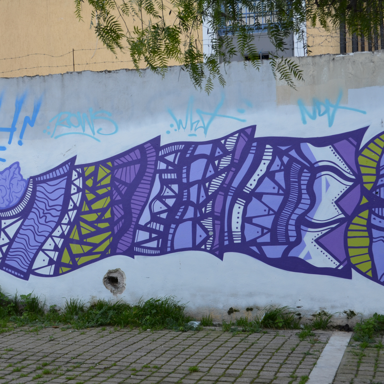 TBG Members explore the Street Art of Athens with Alternative Tours of Athens